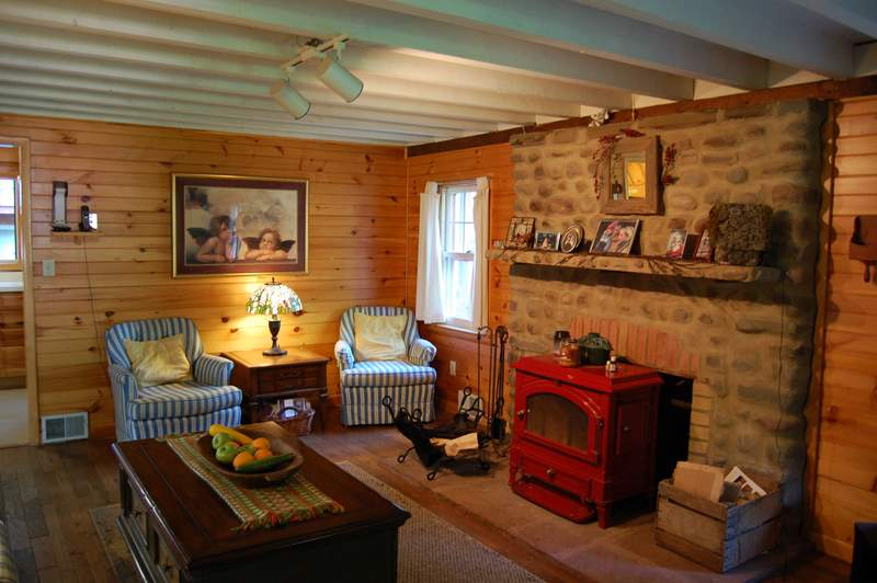 Black Bear Cabin_Fireplace