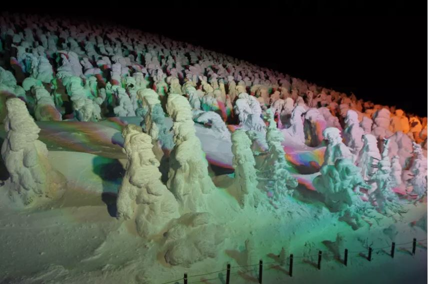 Juhyo Snow Monsters Illuminated