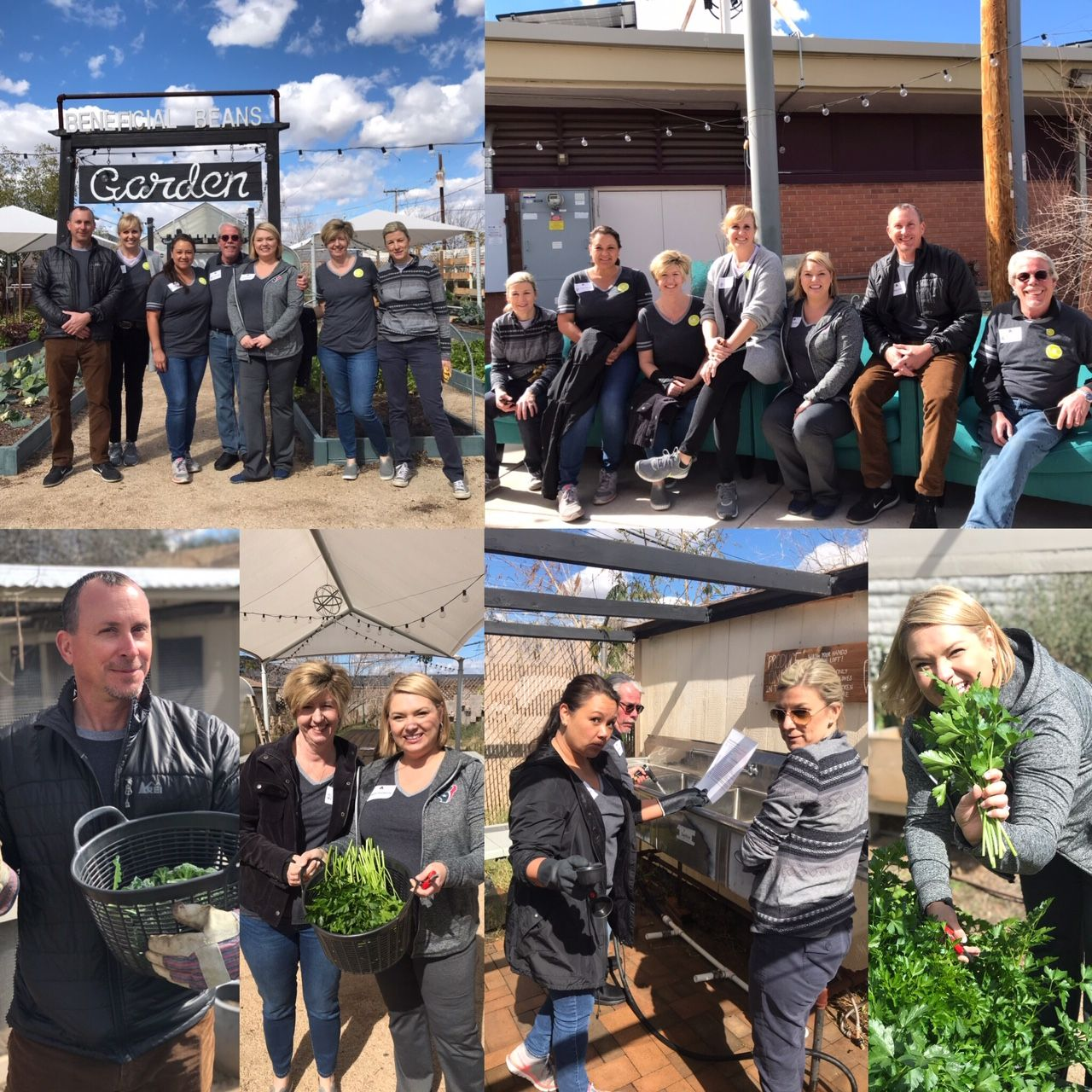 MC Companies Executive Team Volunteers at Beneficial Beans Garden by SARRC