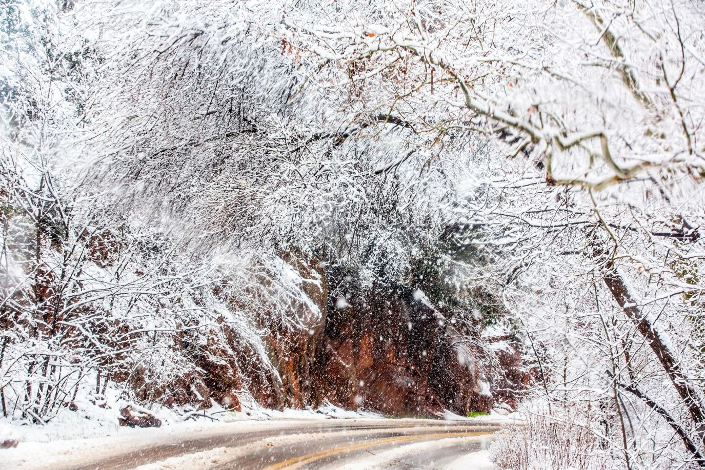 Winter Wonderland In Oak Creek Canyon